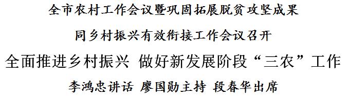 """李鸿忠:全面推进乡村振兴 做好新发展阶段""""三农""""工作"""